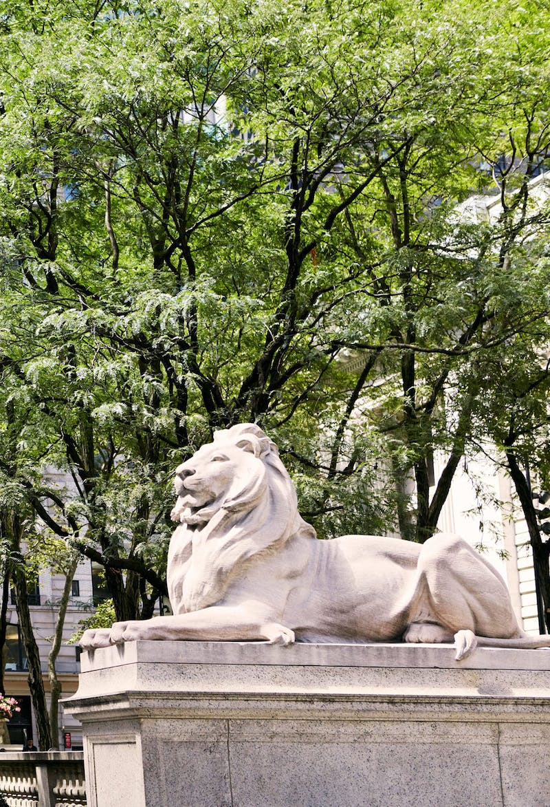New York City Public Library Lions